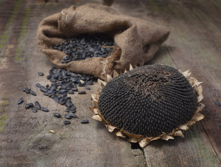 dried Sunflower and seeds in burlap bag on wooden background