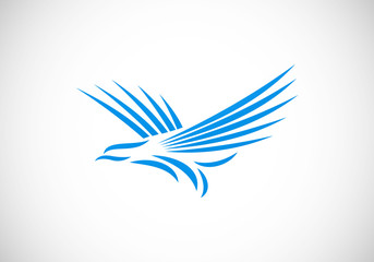 hawk eagle abstract line vector logo
