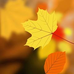 Herbst Hintergrund mit fallenden Blättern