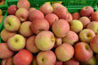 canvas print picture - Äpfel auf dem Markt