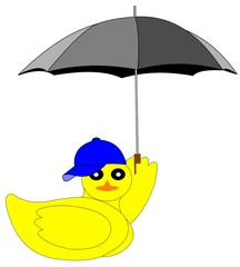 duck with umbrella and ball cap