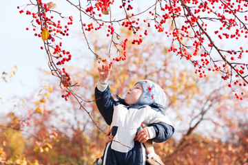 Kid baby child boy on autumn background playing with berries
