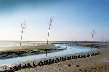 Pricken im Wattenmeer