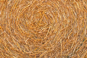 Straw Hay Background