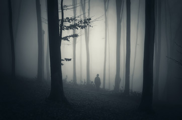 man in a mysterious dark forest