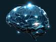 Human Brain - 71140964