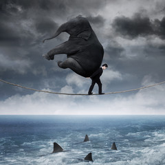 Person with an elephant above sea