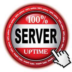 100% SERVER UPTIME ICON