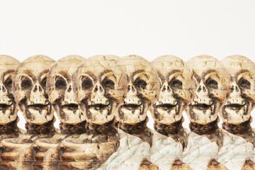 Horizon skeletons on a peeling background