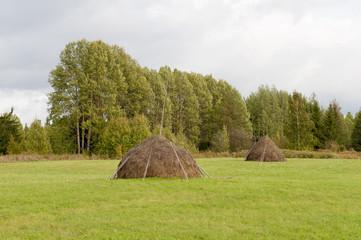 Haystacks on a meadow