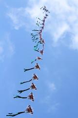 Drachenkette
