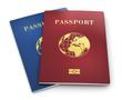 canvas print picture - Biometric passports