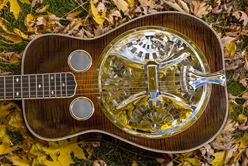 Autumn leaves with a Dobro Guitar