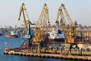 Ships and cranes in seaport