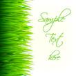 green leaves banner