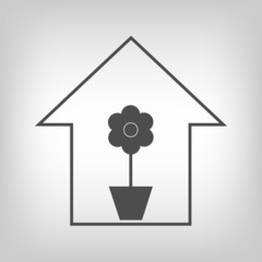 House with plant