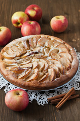 Apple pie with cinnamon on the wooden backgraund