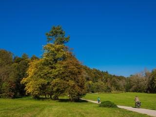 Herbstspaziergang in Maisinger Schlucht