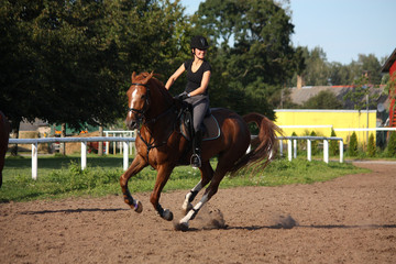 Brunette woman cantering on chestnut horse