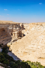 landscape of the gorge in the Negev desert