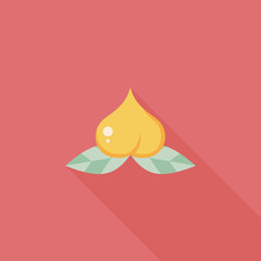 Chinese New Year peaches of immortality flat icon wtih long shad