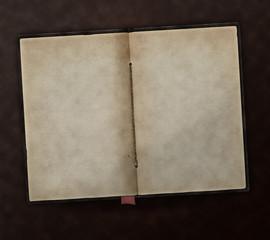 Buch Urkunde Vintage