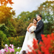 Wedding couple in a summer park