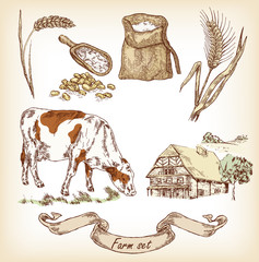 Farm set. Hand drawn illustration of cow, house, grain, wheat