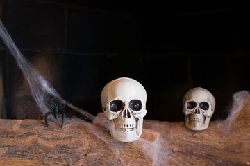 skulls in a fireplace