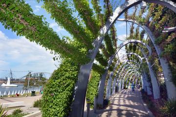 South Bank Parklands - Brisbane Australia