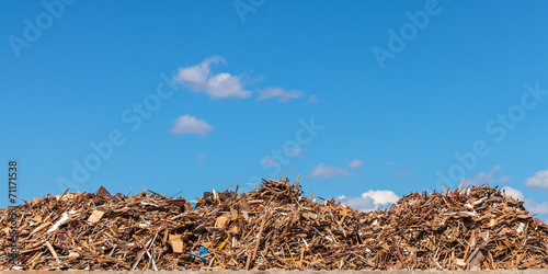 Staande foto Industrial geb. Large pile of wood on a garbage depot