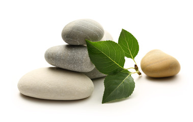 Stones with leaves