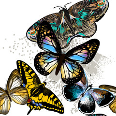 Fashion seamless pattern with colorful butterflies