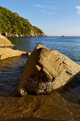 stone    thailand kho tao bay abstract of