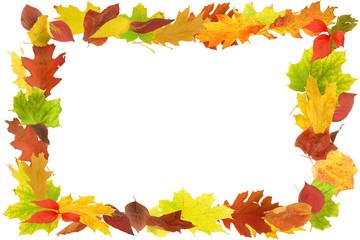 Herbst 92