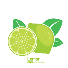 lemon illustrator vector