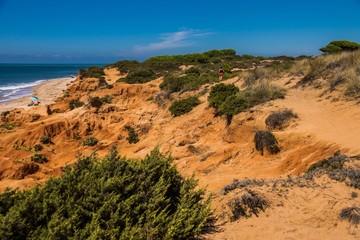 Felsige Dünenlandschaft an Küste von Andalusien