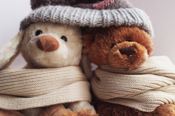 Soft toys embraced, a dog and a bear in a scarf and hat