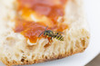 A wasp on a slice of bread and jam