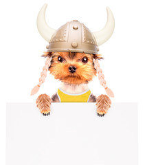 dog dressed up as a viking with banner