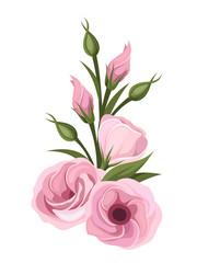 Pink lisianthus flowers. Vector illustration.