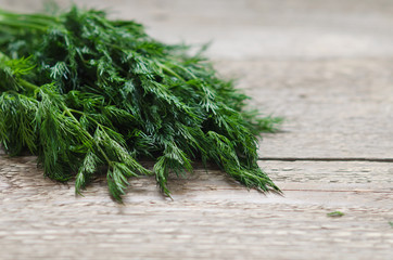 wet green dill on the table