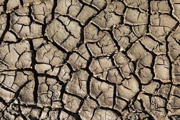 Natural texture. Closeup of wet cracked ground