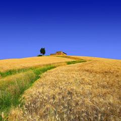 La collina della solitudine