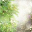 Zdjęcia na płótnie, fototapety, obrazy : christmas background with fir tree and gleaming background