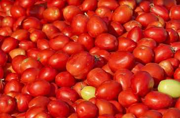 Israel market produce: fresh red tomatoes