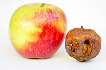 Pomme consommable et pomme squelettique