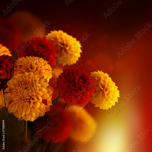 canvas print picture Colorful autumn chrysanthemums with flares, floral background