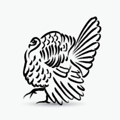 Painted turkey bird