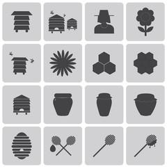 Honey Bee Black icons set. Vector Illustration eps10